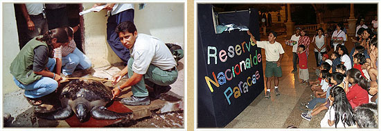 support for the Paracas National Reserve